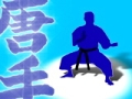 Karate Video Background