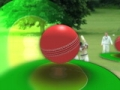 Cricket Video Background