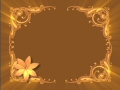 Flower Frame Video Background